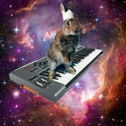 freetoedit rabbit synthesizer keyboard space