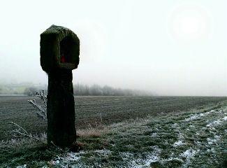cold winter snow white