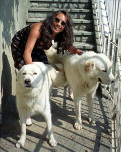 mylove mydogs white big maremmano