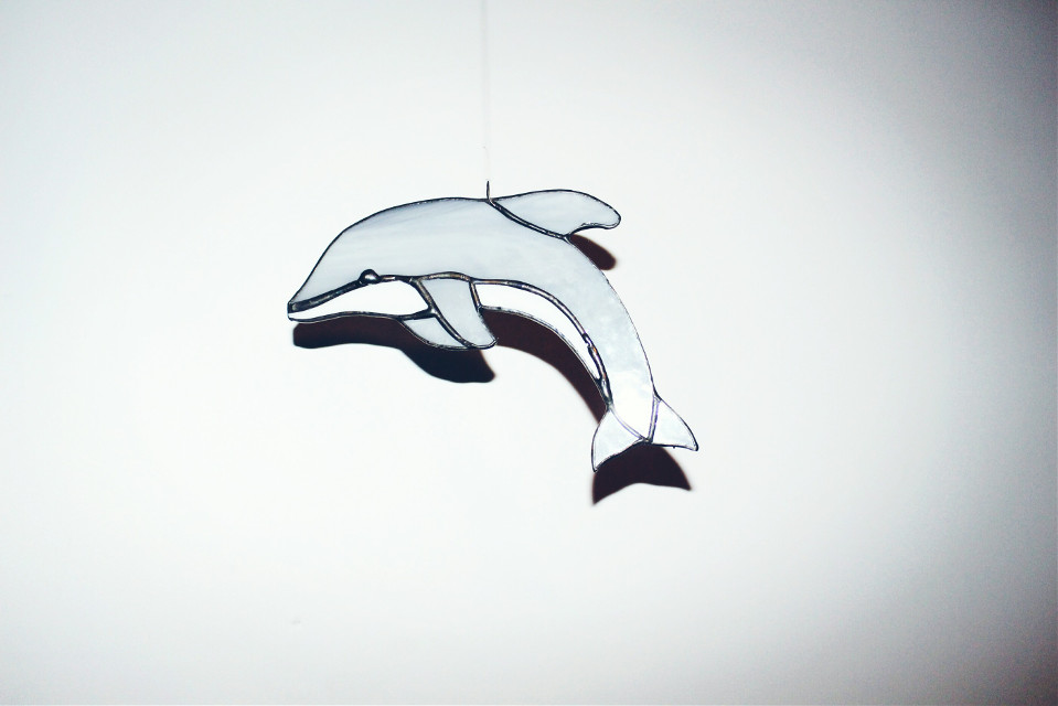 #dolphin #simple #minimalism #FreeToEdit   ✌❤❤❤ #dpccoloredglass