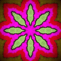 flower pink interesting relaxedandhappy