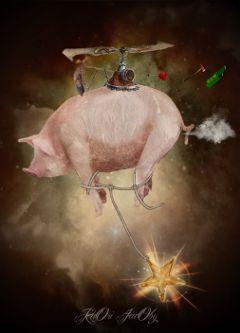 pigs stars sky empty ship freetoedit