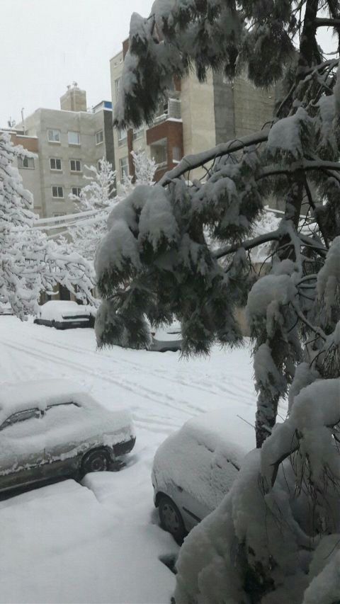 #winter,#freetoedit