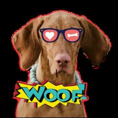 freetoedit ftestickers dog fun