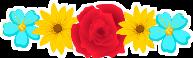 bandoflowers freetoedit